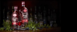 Sloemotion Sloe Vodka Liqueur